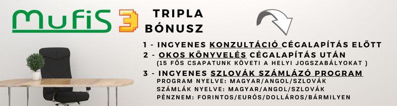 szlovák cégalapítás előnyök