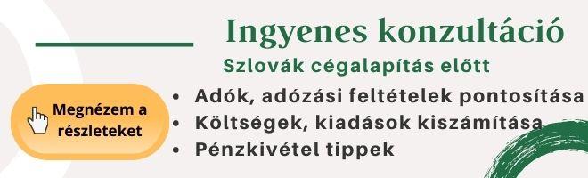 szlovák cégalapítás konzultáció